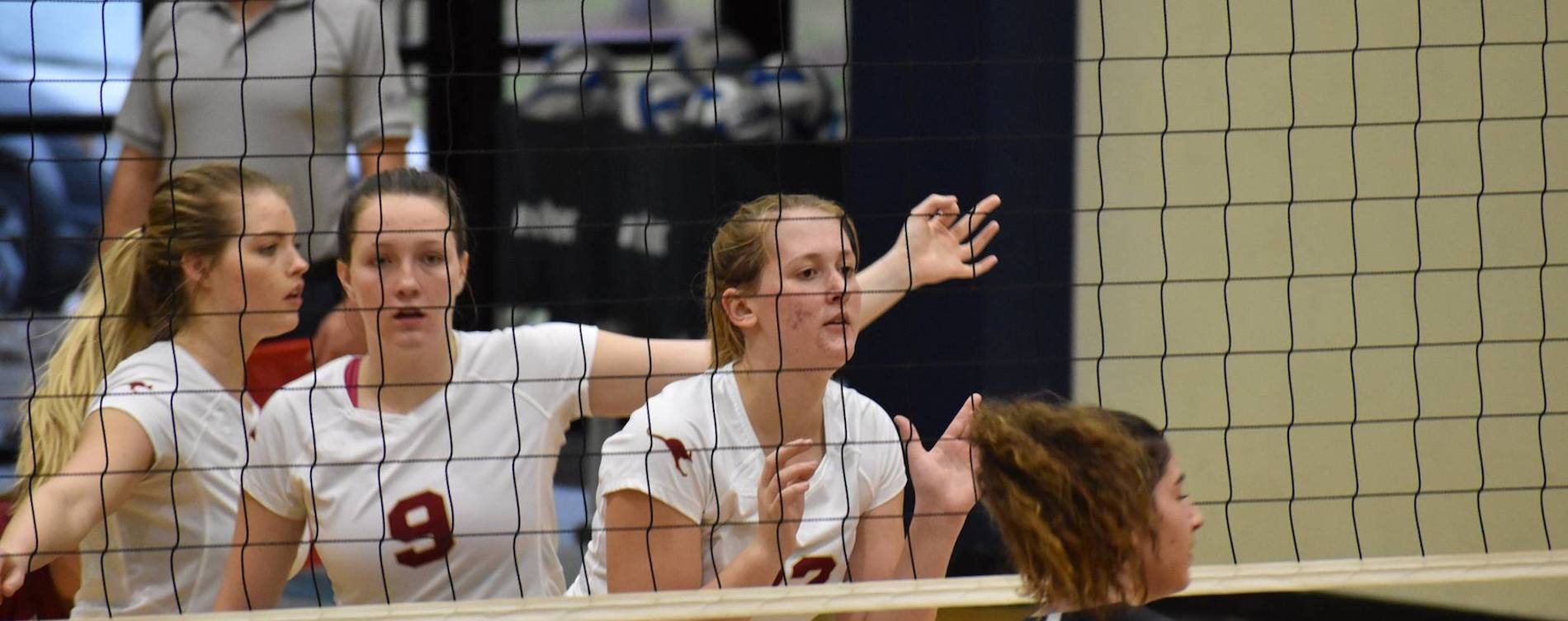 Volleyball Finishes 6th at SCAC Tournament