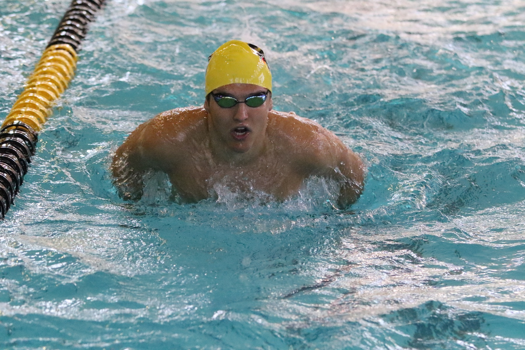 Men's Swimming and Diving Falls to UTPB