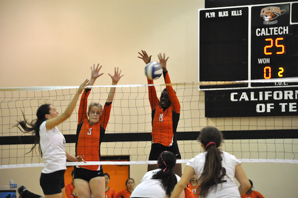 Jamshidi, Little Lead Volleyball at No. 3 Cal Lu