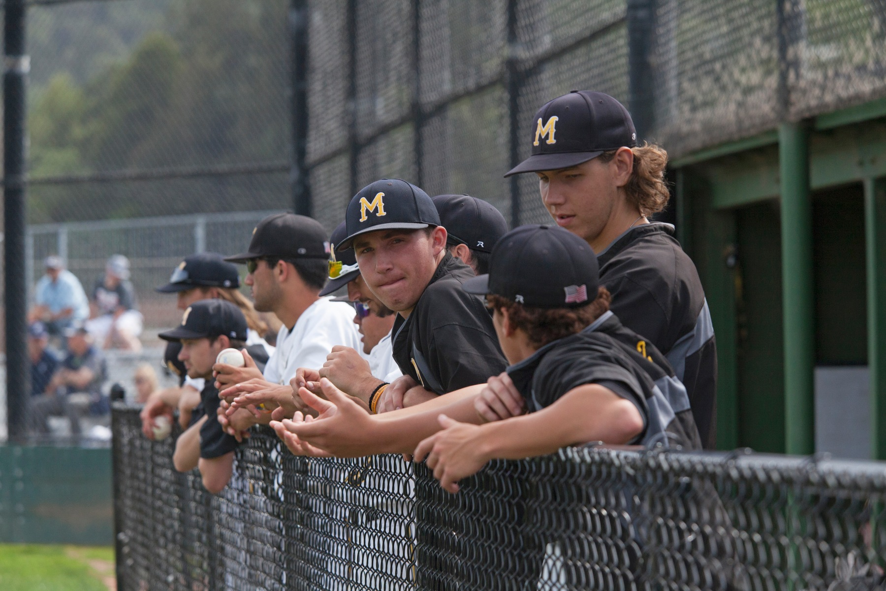 COM Baseball Denied By Los Medanos In First Chance To Clinch BVC