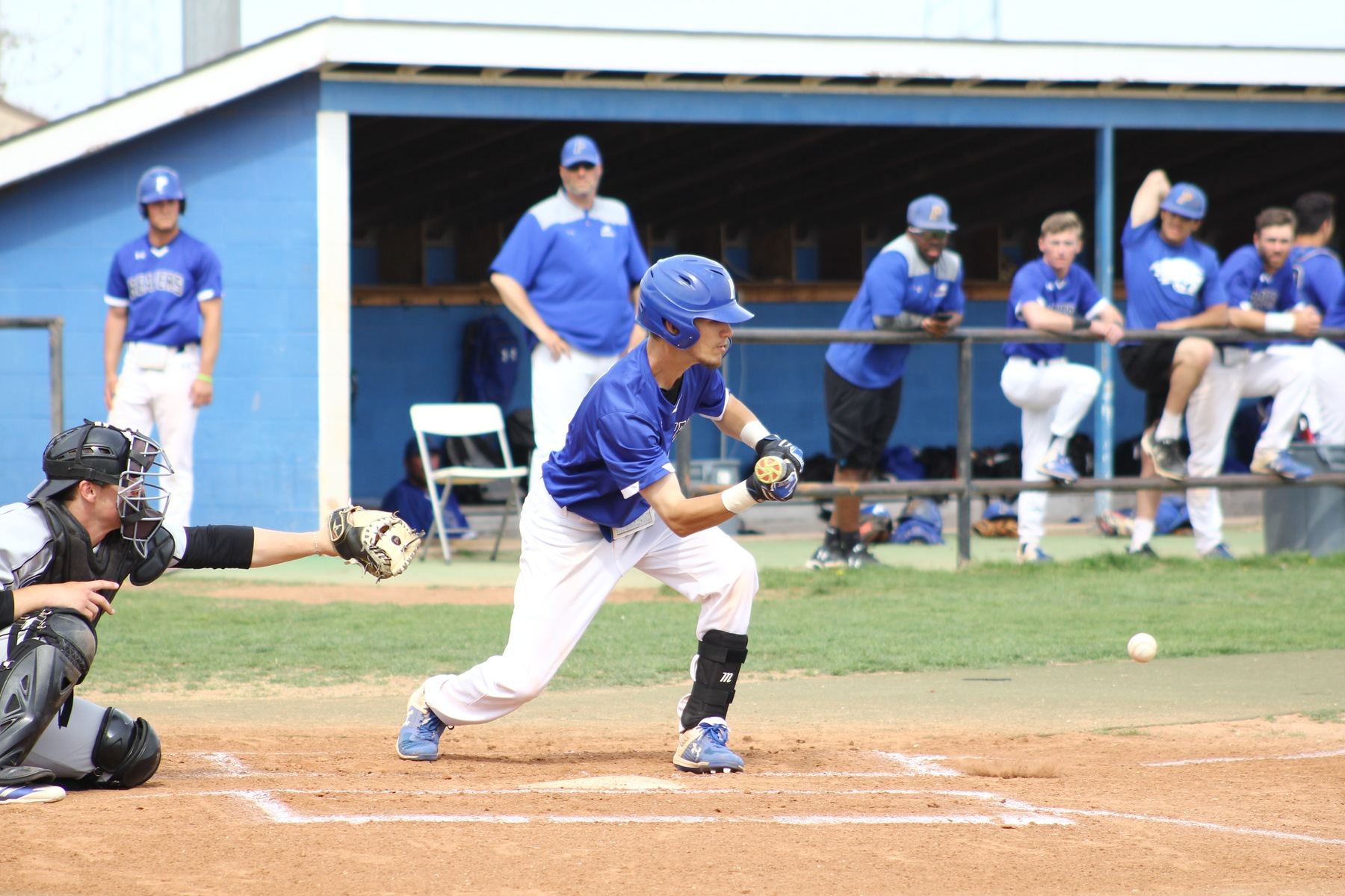 Beavers give up seventh inning lead to Barton