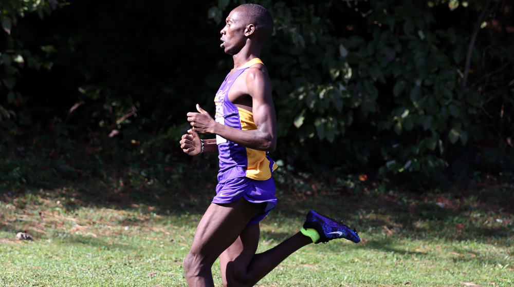Golden Eagle men's cross country places 13th at Greater Louisville Classic
