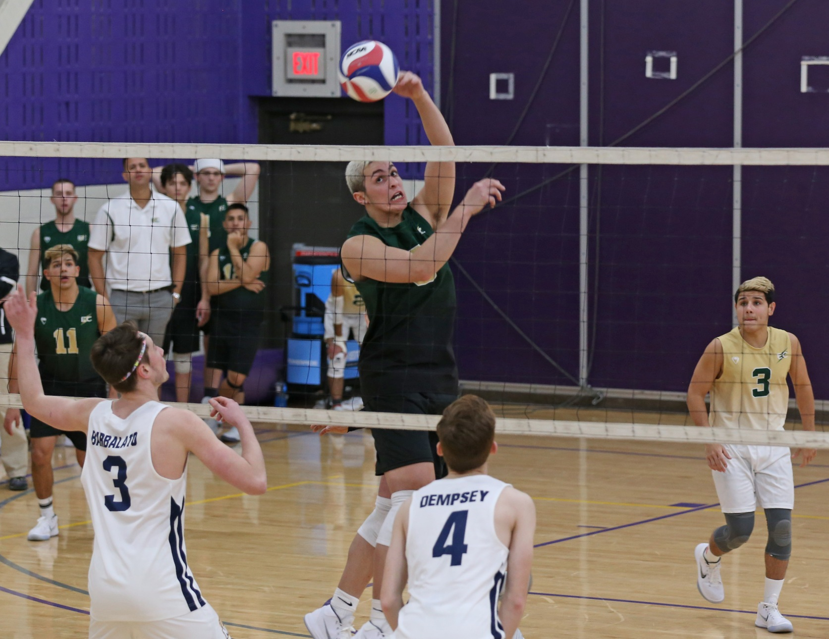 Men's Volleyball Splits Tri-Match With MIT And Illinois Tech
