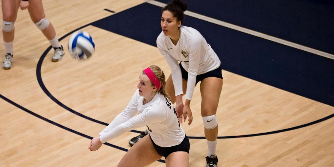 Volleyball Falls in Three in GNAC Opener at Rivier
