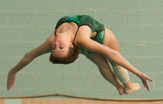 Bosse Shines in NEISDA Diving Championship