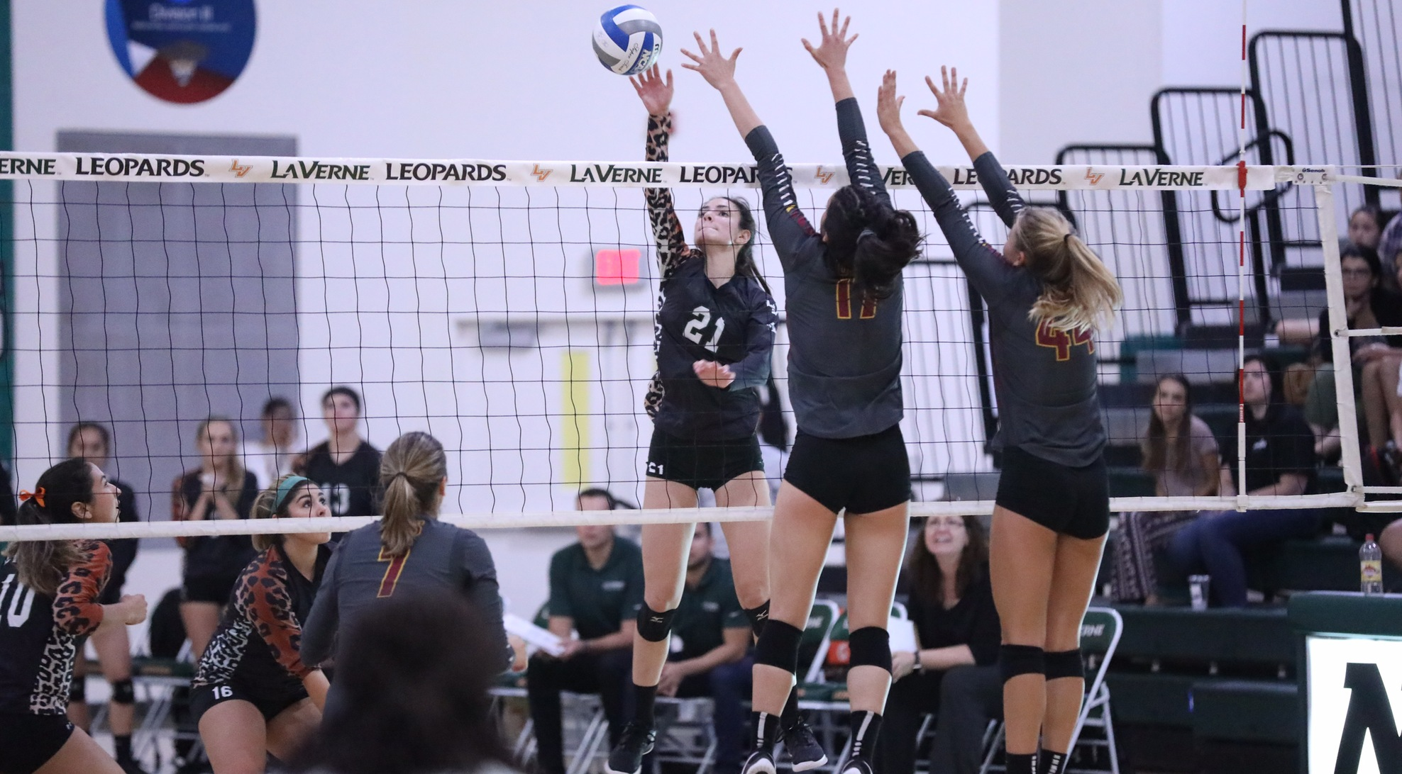 Volleyball falls in five to No. 5 CMS