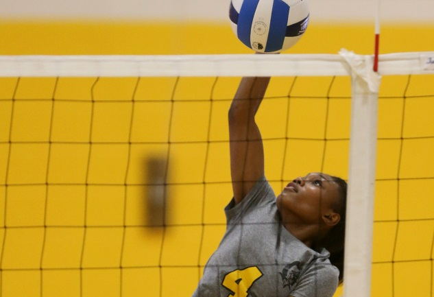 MCC volleyball outlasts Erie