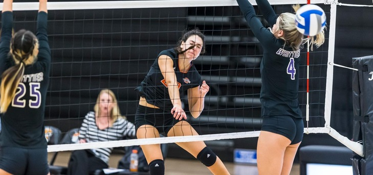 Wagner, Tigers Sweep Sagehens