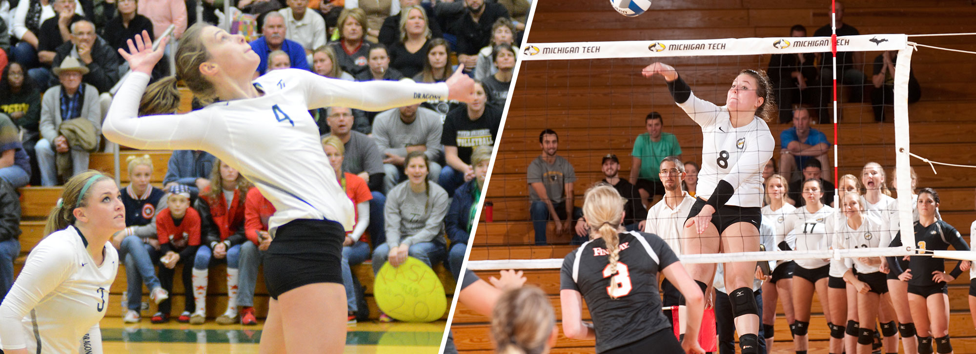Michigan Tech's Petersen, Tiffin's Huffman Named GLIAC Volleyball Players of the Week