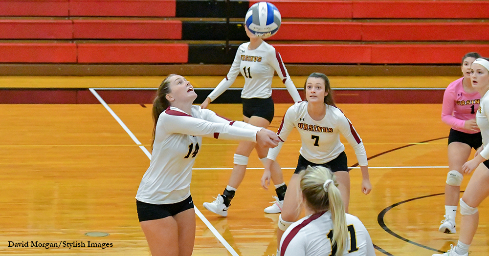 Volleyball Hangs Tough at Haverford
