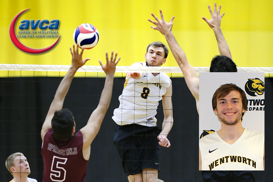 Junior Alex Potts becomes the first men's volleyball player in program history to earn All-America honors
