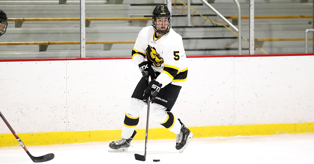 Hockey Edged by Endicott on Late Goal