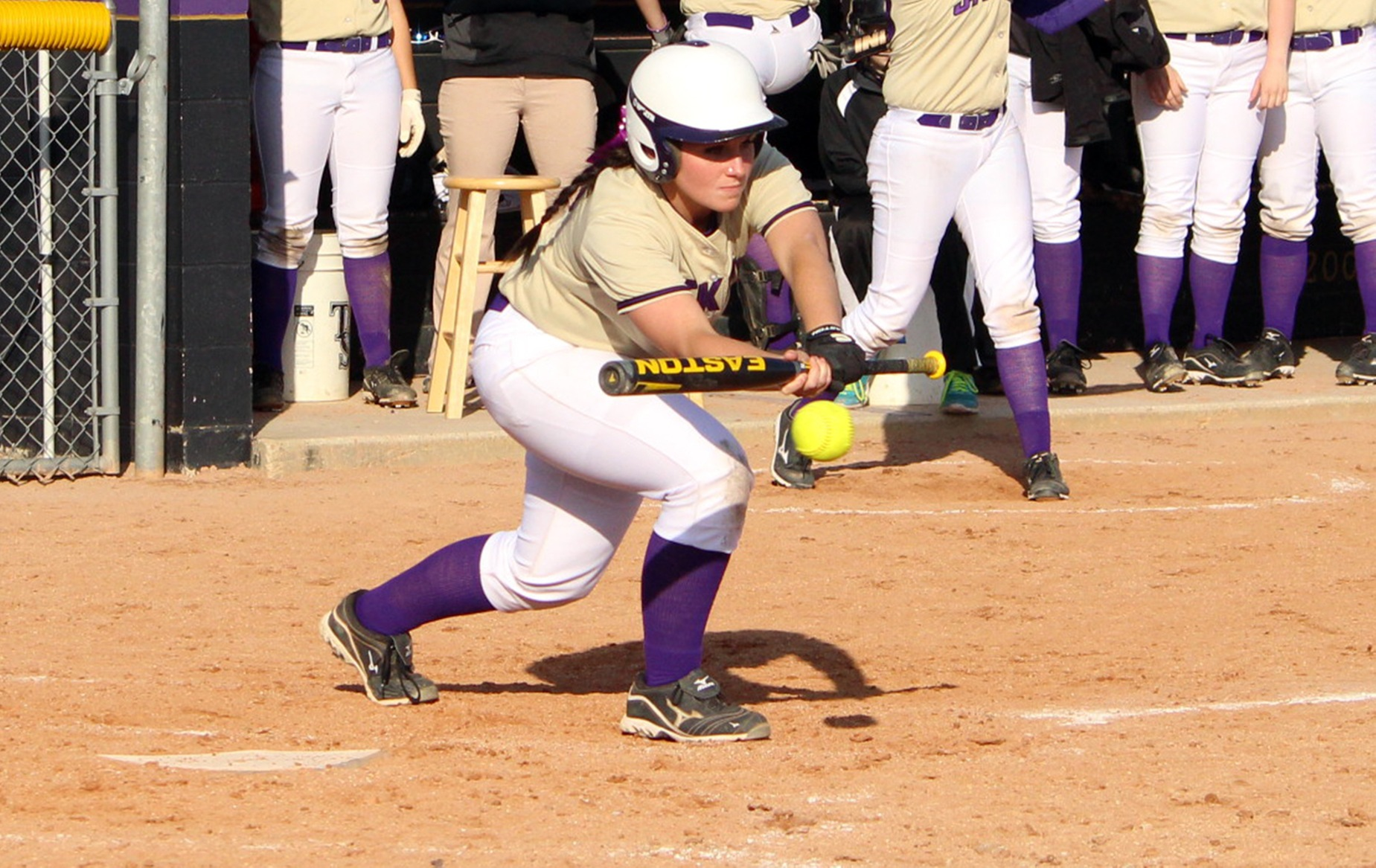 Softball drops pair versus Adrian to close homestand