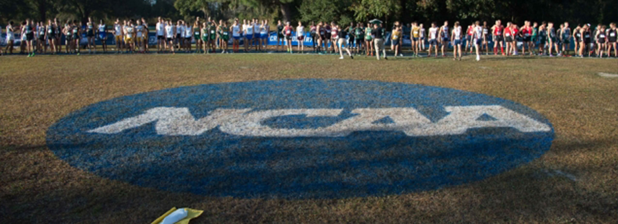 NCAA Cross Country Championships Qualifiers Announced