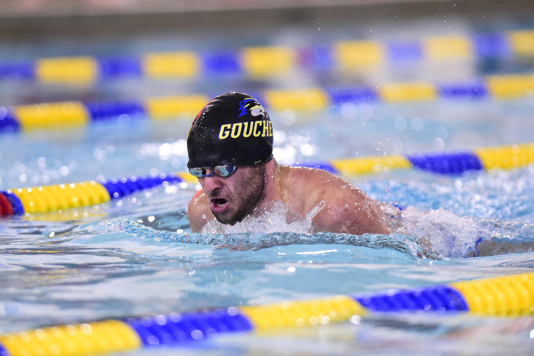 Goucher Swimming Dominates Gallaudet at Saturday Meet