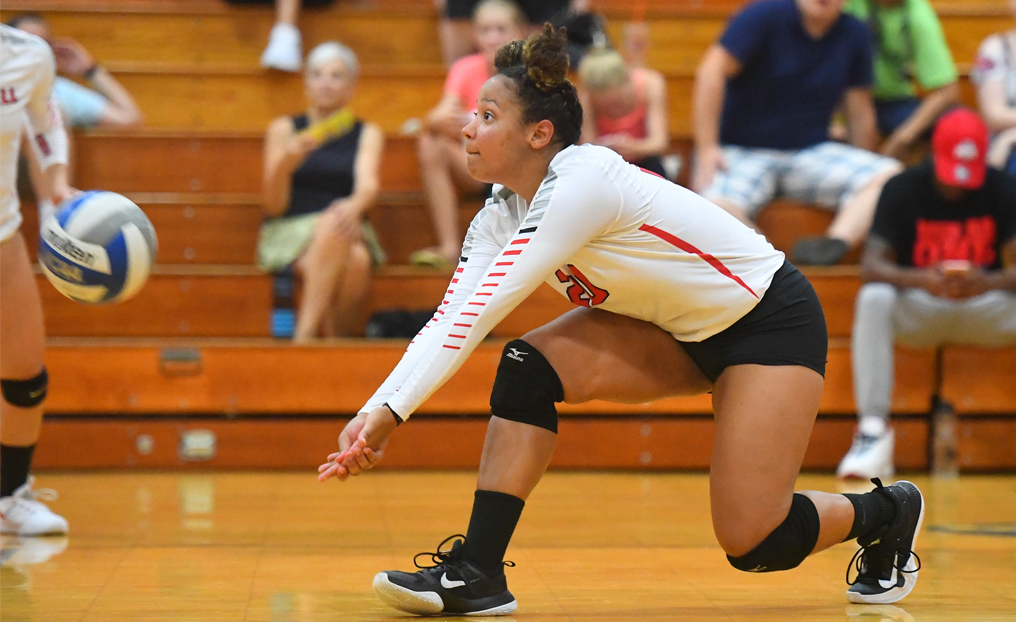 Volleyball Tops Newbury in Five Sets
