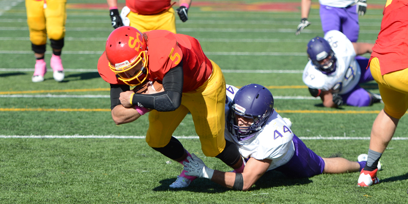 Turnovers costly in football's loss to Loras