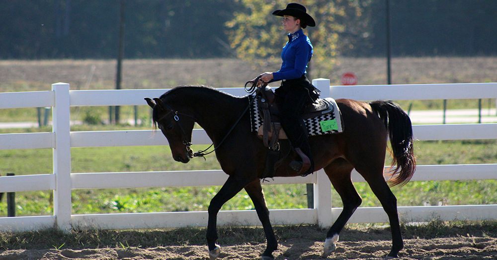#PomeroyWestern Steals Show at Henry County Saddle Club