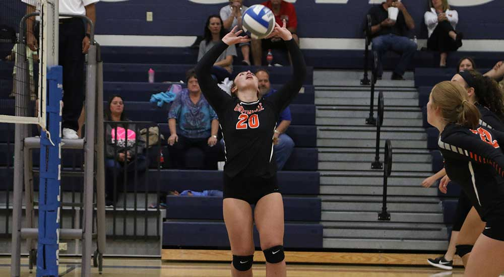 Women's volleyball tripped up by  Westminster