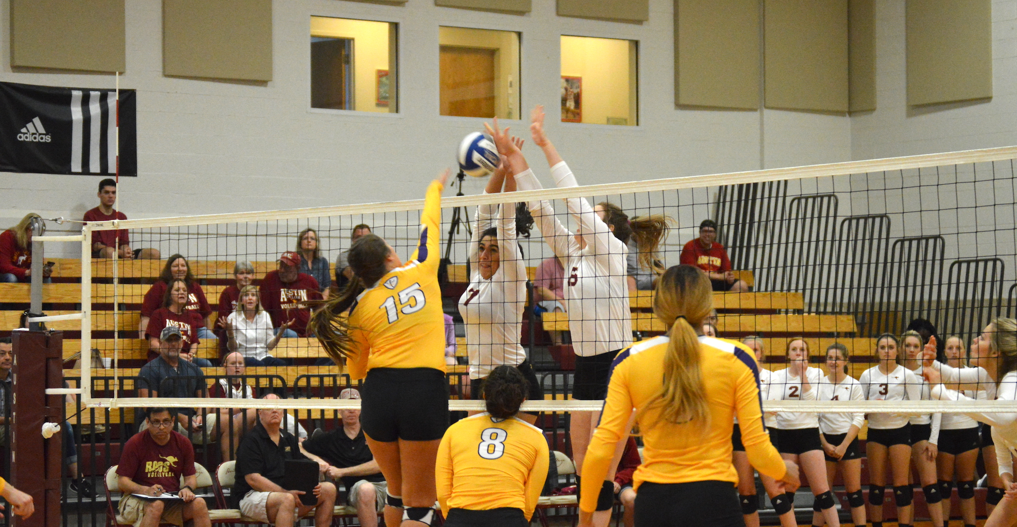 Austin College Finishes Fifth at SCAC Volleyball Championship