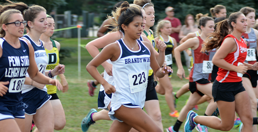Brandywine Women Place Second, Men Third At Mont Alto Invitational