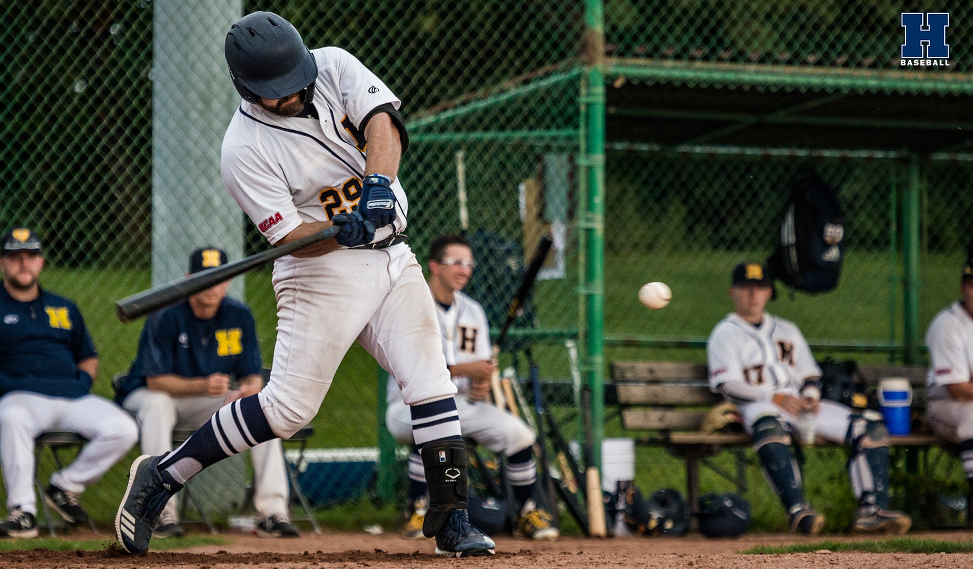 Baseball Blanks George Brown in Home Opener