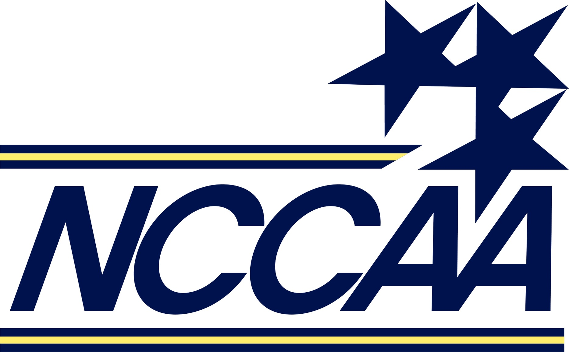 Eight Men's Soccer Players Earn NCCAA Honors