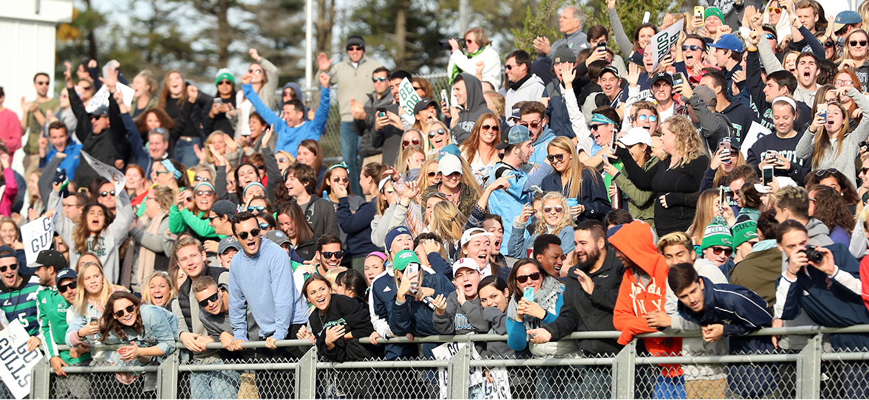 Fans cheer at an Endicott Athletics game.