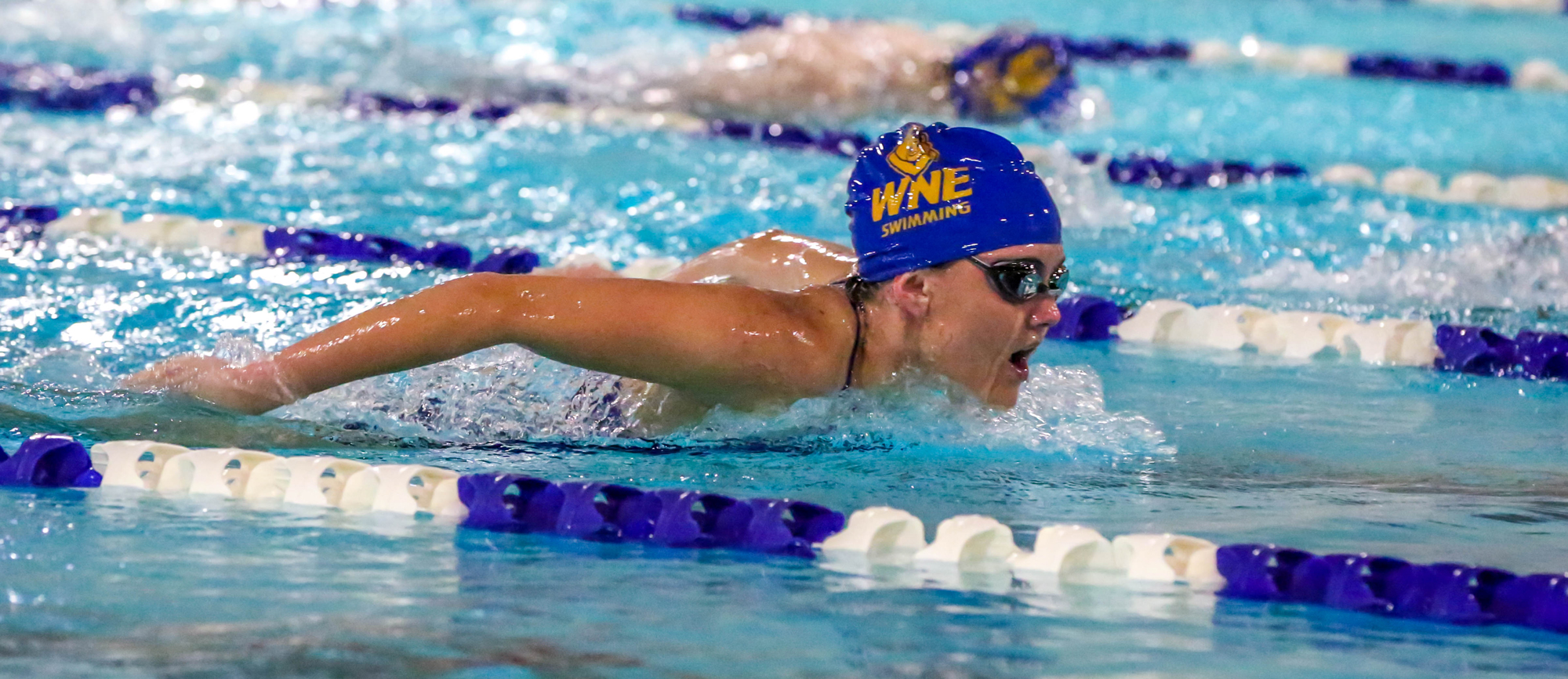 Western New England Tops Western Connecticut in Dual Meet Opener, 167-99