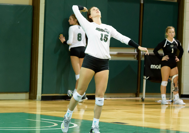Stetson Defeats Upstate 3-1
