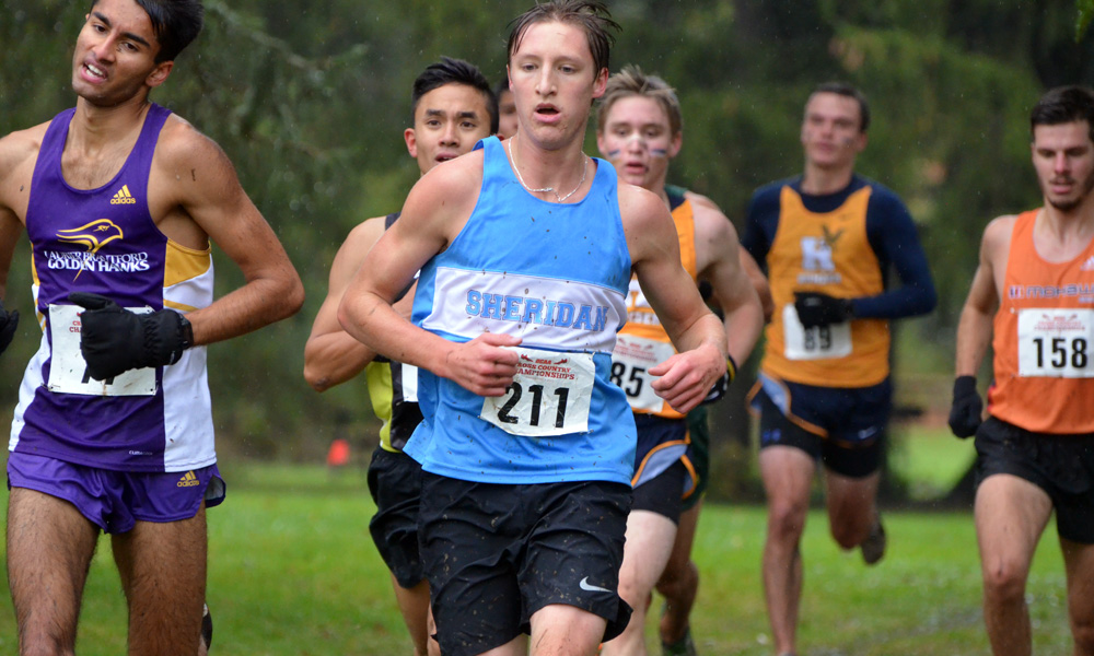Men's cross country win bronze at OCAA Championship, women finish seventh
