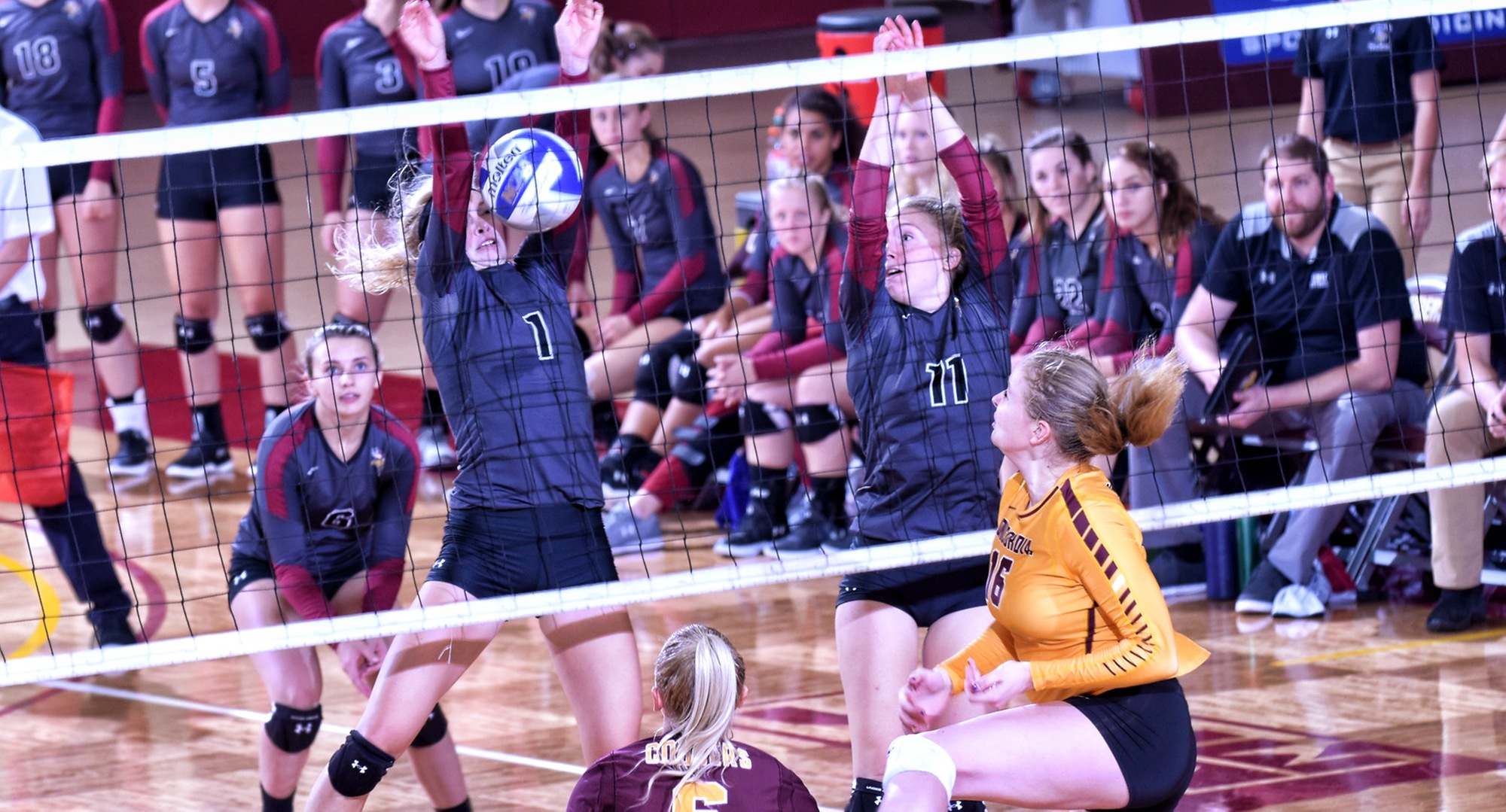 Freshman Abigail Christensen puts down the kill in the Cobbers' home opener against Valley City State.