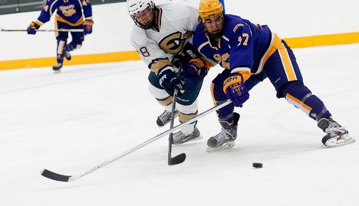 Men's Hockey Picks up Eighth Shutout in Win Over Yellowjackets