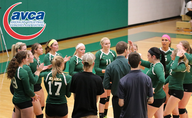 Women's Volleyball Earns AVCA Team Academic Award