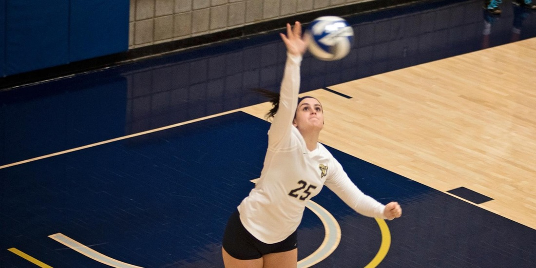 Volleyball Blanks Anna Maria