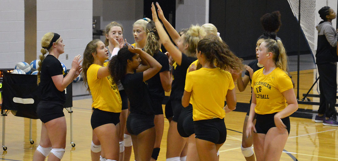 Volleyball opens preseason training