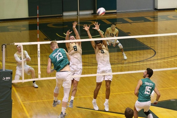 #5 Men's Volleyball Upset In NECC Championship Match