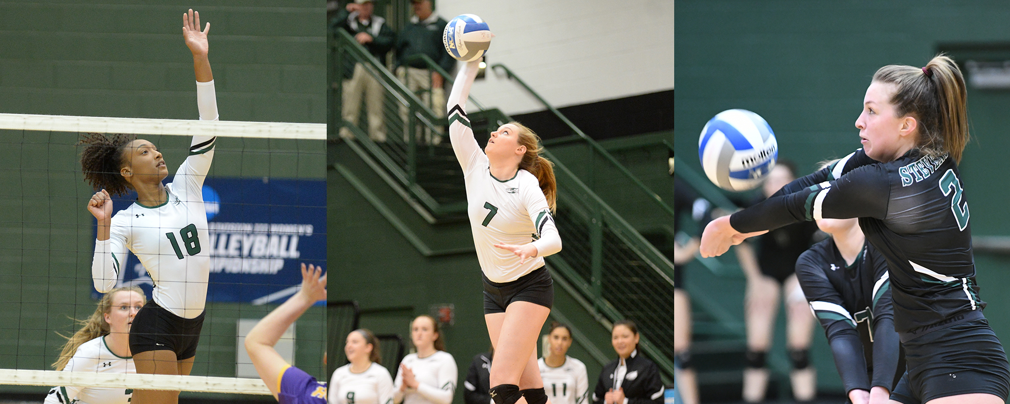 Women's Volleyball Places Three on MAC All-Academic Squad