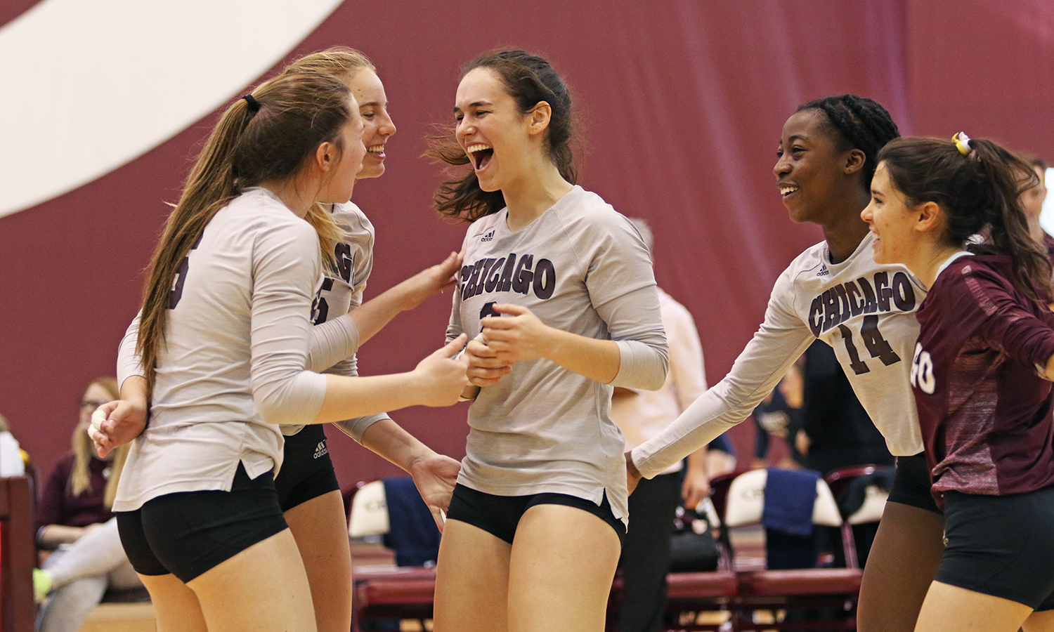 Maroon Volleyball Advances to UAA Title Match; Will Face No. 1 Emory