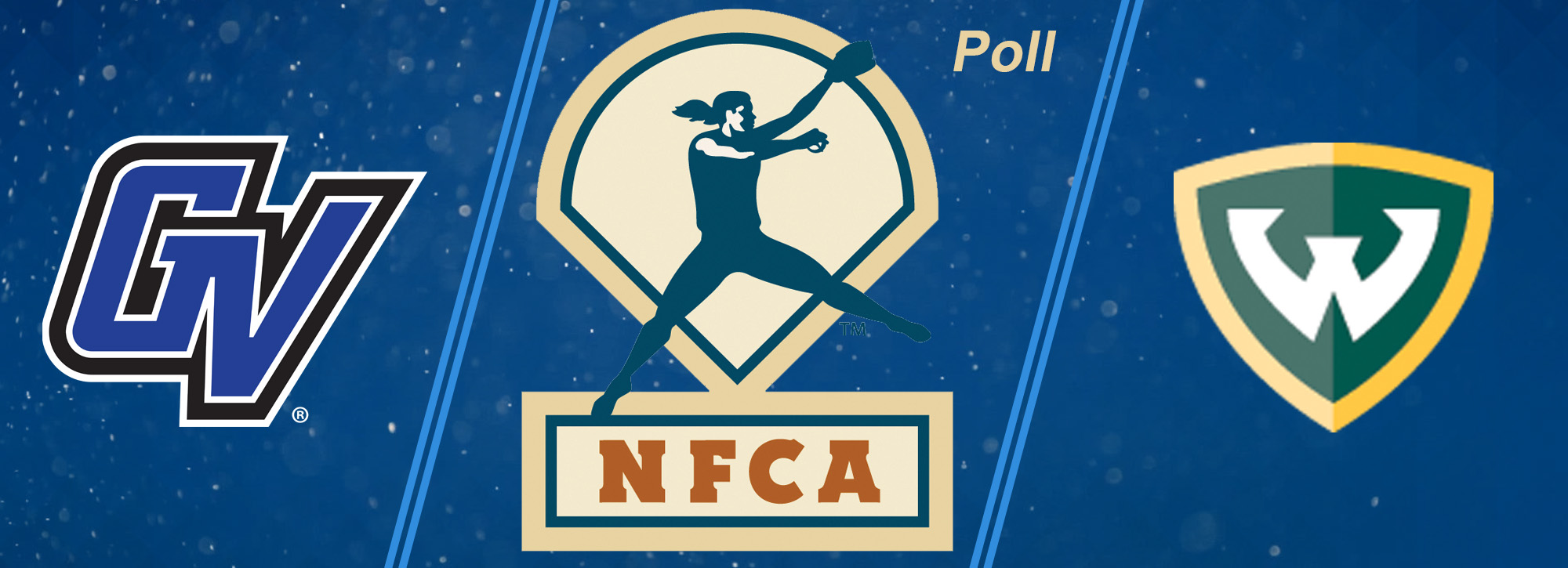 Lakers are ranked 16th in NFCA Pre-Season Coaches' Poll