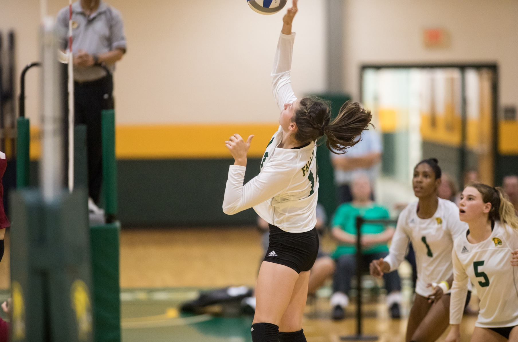 Falcons Defeated By Vikings In Three Sets