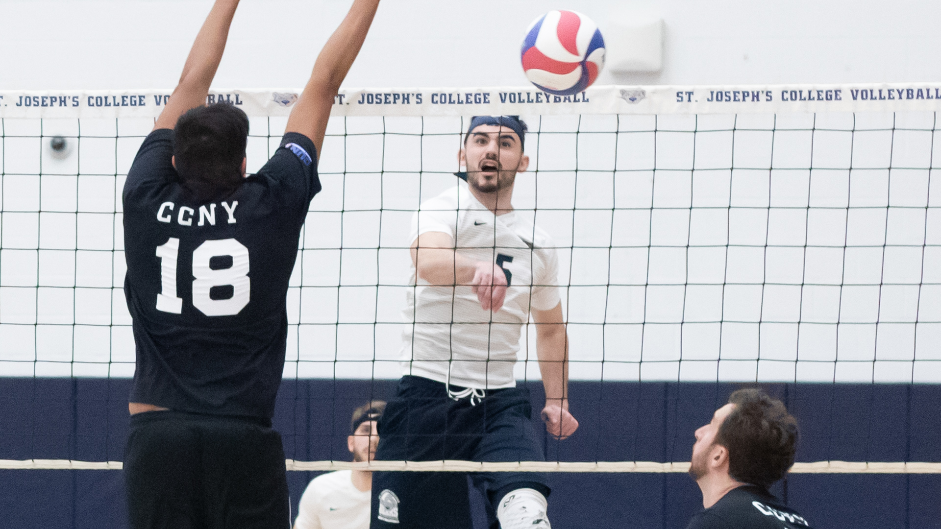 Men's Volleyball Tripped Up by CCNY