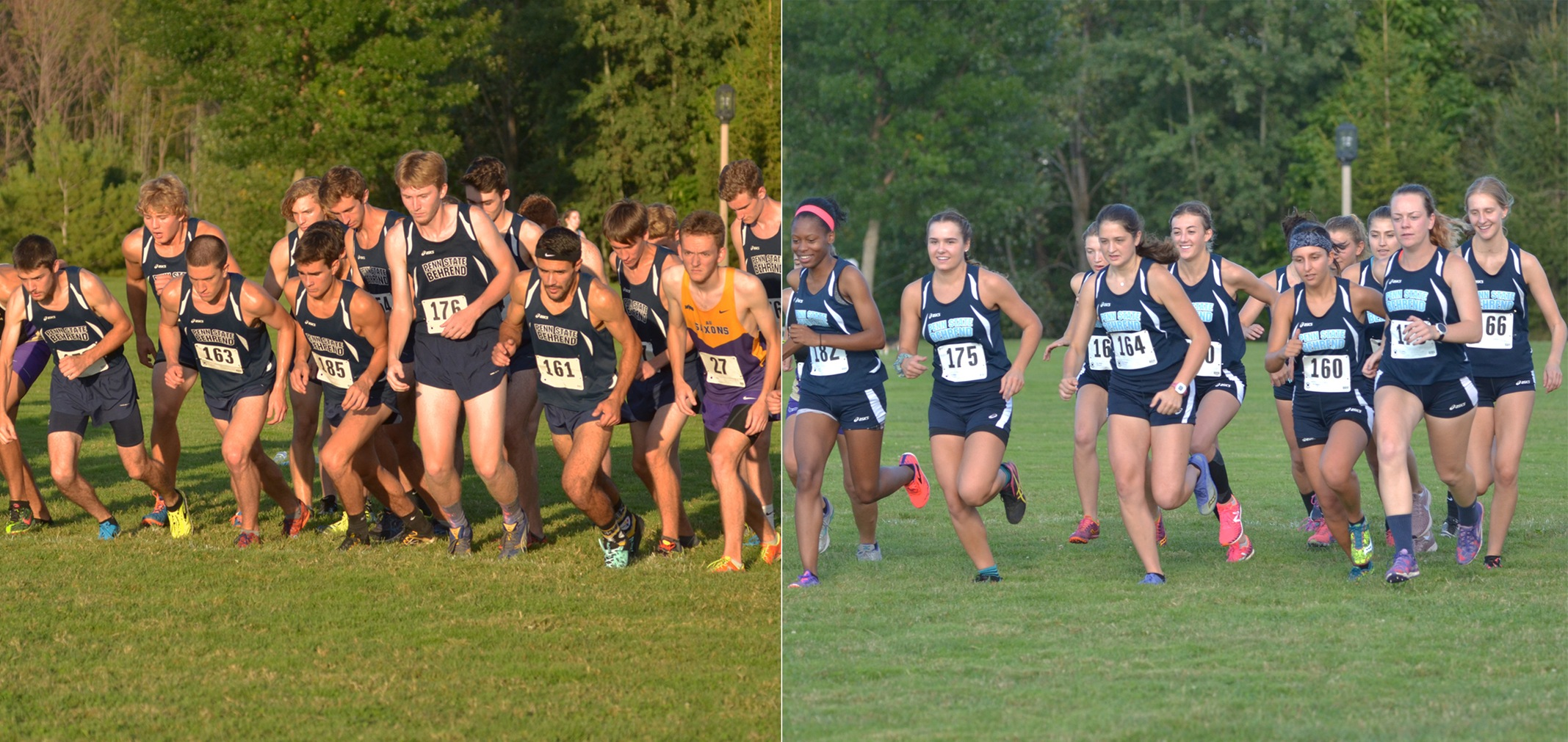 Men's & Women's Cross Country Earns USTFCCCA Academic Awards