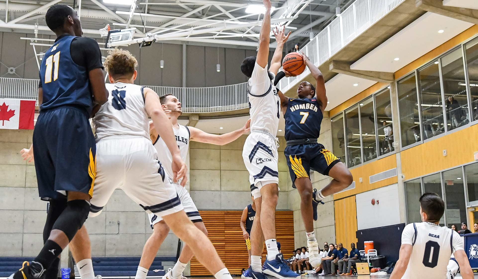 CASCART'S 29 POINTS LIFTS No. 4 HUMBER PAST UTM, 91-77