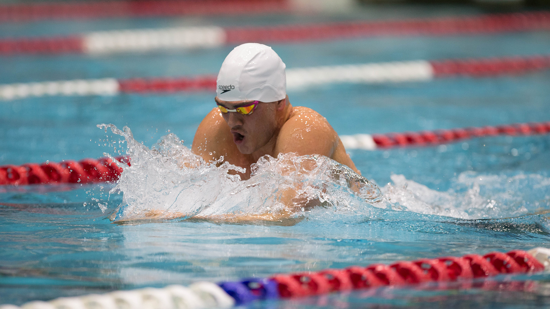 This Week in WAC Swimming and Diving - Dec. 26
