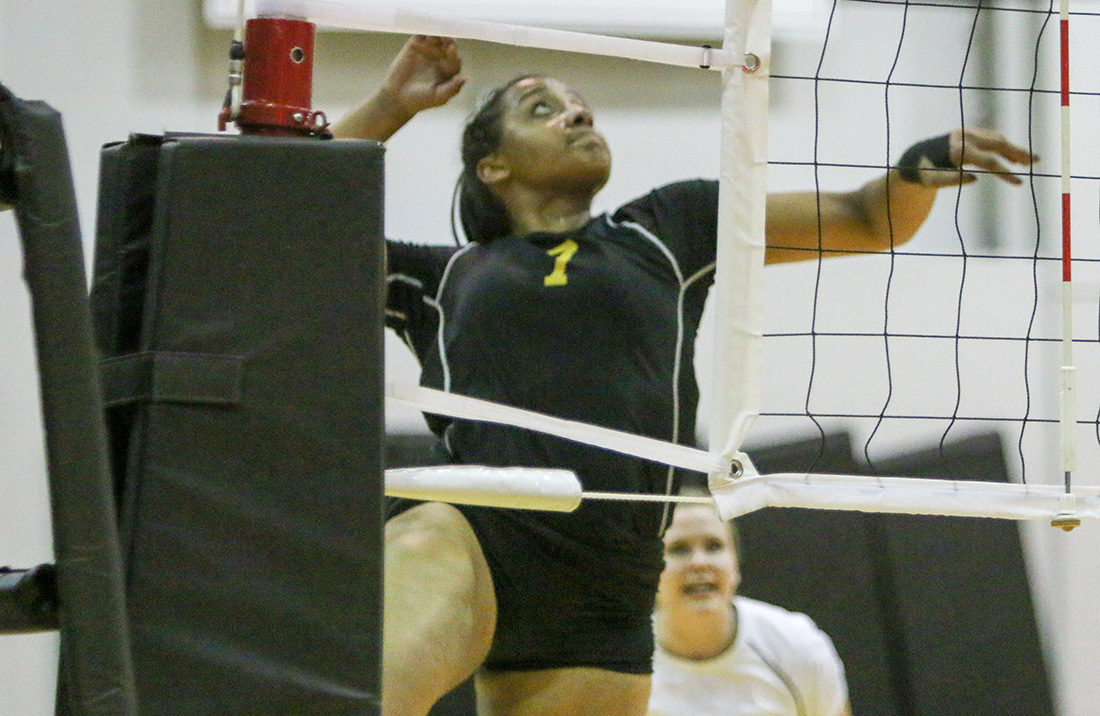 Volleyball Drops Road Contest At Ohio Valley