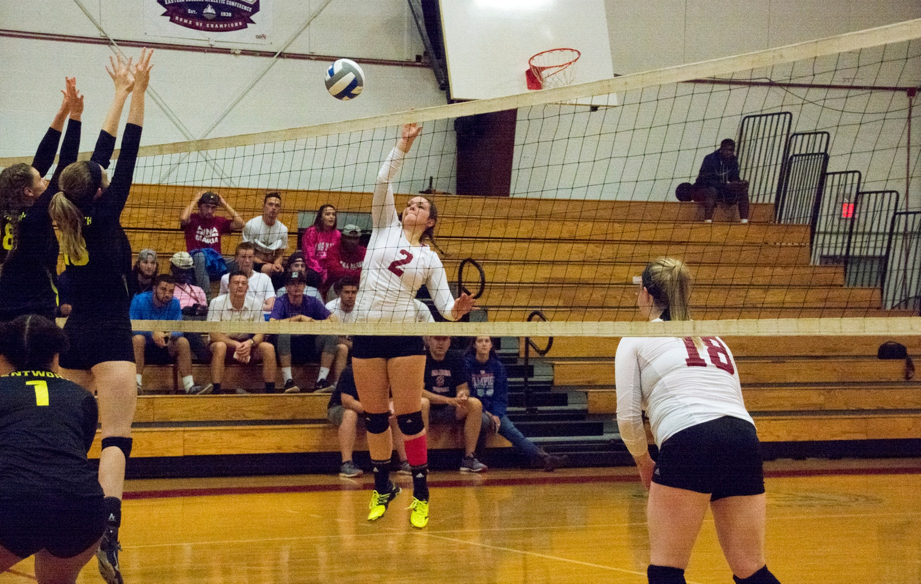 WOMEN'S VOLLEYBALL: Clark too strong for Anna Maria