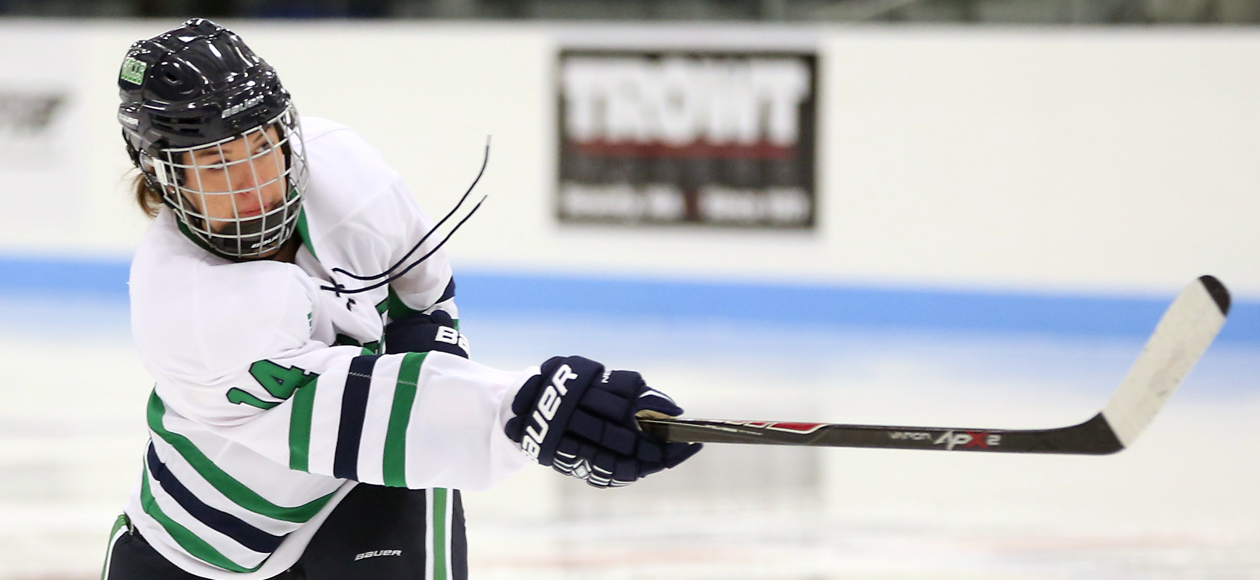 CHC SEMIFINALS: No. 2 Endicott Takes On No. 3 Morrisville State This Saturday