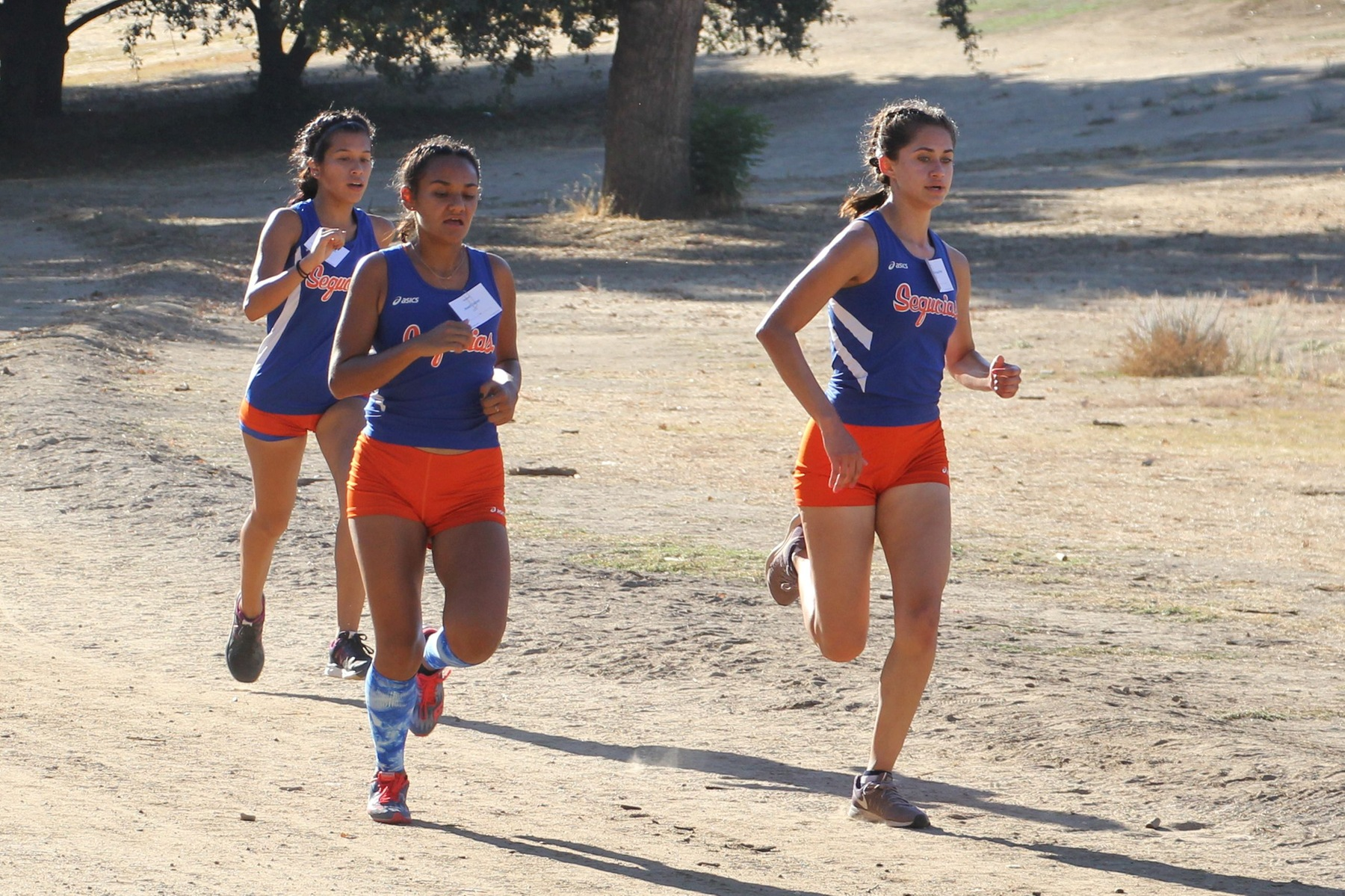 Lady Giants Dominate at Conference Championships