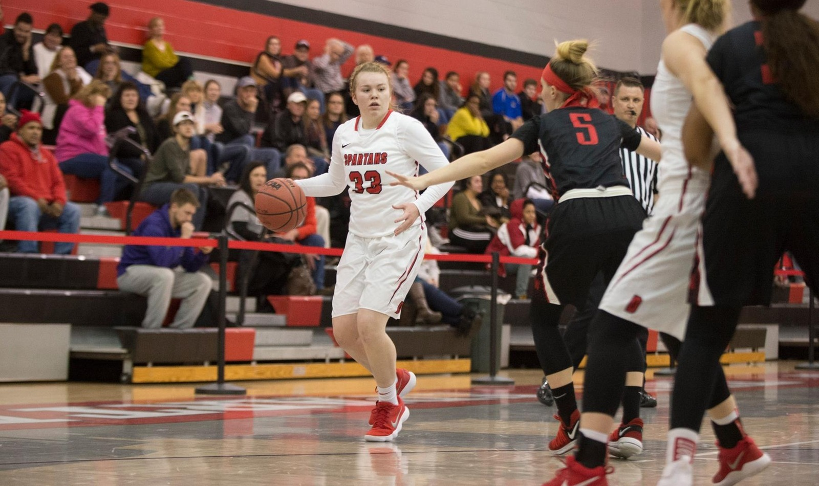 Women's Basketball Falls to Elmira at Home